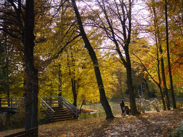 Park am Hinterbrühler See, Foto: Katy Spichal
