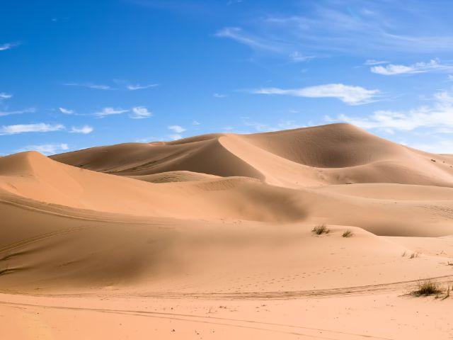 Sahara Dünenlandschaft, Foto: CraigBurrows / Shutterstock.com