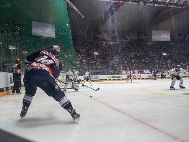 Der EHC Red Bull München gegen die Eisbären Berlin in der Olympiahalle, Foto: EHC Red Bull München