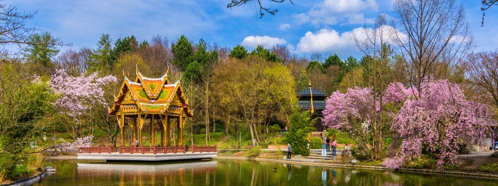 Thai Sala im Westpark mit rosa Bäumen, Foto: muenchen.de/Michael Hofmann