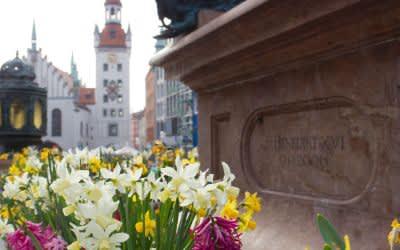 Frühling auf dem Marienplatz